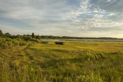 Allens Pond marsh royalty free stock photography