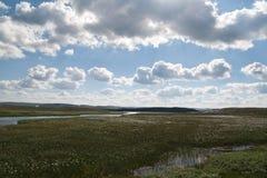Marsh on Hardangervidda. The photo is taken in the Hardangervidda national park, Norway Stock Image