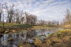 Marsh hummocks Royalty Free Stock Images