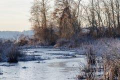 Marsh Inlet congelado imagem de stock royalty free