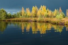 Marsh lake Royalty Free Stock Image