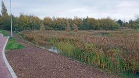 Marsh Land In Kent foto de stock