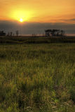 Marsh Land Sunrise Stock Photos