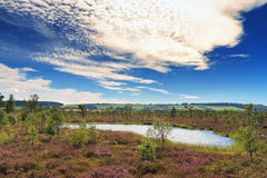Marsh landscape at the low mountain range Rhoen Stock Photos