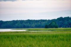 Marsh Landscape in Mount Pleasant South Carolina stock photo