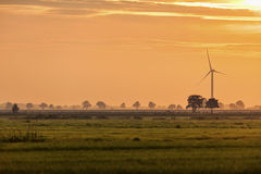 Marsh landscape with wind turbine Stock Images