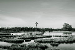 Marsh landscape with windmill Royalty Free Stock Photography