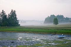 Marsh in morning fog Royalty Free Stock Images