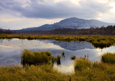 Marsh and mountain. Russia, South Ural, Marsh near of city Beloretsk Stock Photo
