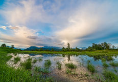 Marsh with Mountain and Amazing Clouds Royalty Free Stock Photo