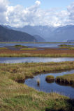 Marsh and Mountains. Marshlands with mountains in the background Stock Image