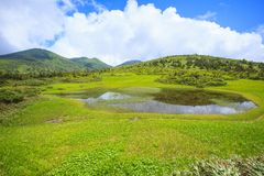 Marsh of Mt. Hakkodasan Royalty Free Stock Photo