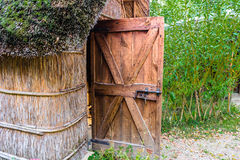 Marsh Plants Huts Royalty Free Stock Image