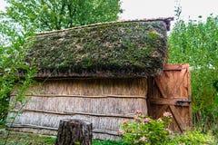 Marsh Plants Huts Royalty Free Stock Photo