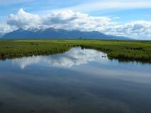 Marsh reflections royalty free stock photography