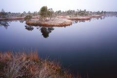 Marsh See stockbild
