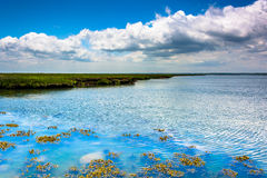 A marsh on Strathmere Bay, in Strathmere, New Jersey Stock Photos