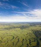 Marsh in summer, top view Royalty Free Stock Photo