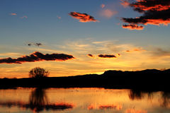 Marsh Sunset. Sunset on marsh at Bosque Del Apache New Royalty Free Stock Photography