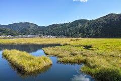 Marsh in Tengchong Royalty Free Stock Photo