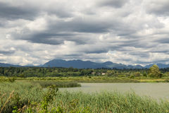 Marsh By Vancouver. Looking North From Richmond To Vancouver By A Marshy Area stock photography