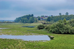 Marsh and village Stock Photography