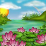 Marsh and water lilies Royalty Free Stock Photos