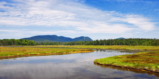 Marshall Brook at Bass Harbor Marsh Royalty Free Stock Photo