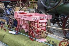 Marshall Royalty Free Stock Photo