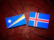 Marshall wyspy zaznaczają z Islandzką flaga na drzewnego fiszorka isolat zdjęcie stock