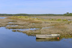 Marshes in the Bay of Arcachon Stock Images