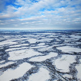 Marshes are covered snow, top view Stock Photography
