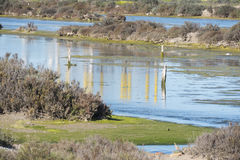 Marshes of Puerto Real, Trocadero Cano, Cadiz, Spain Royalty Free Stock Photo