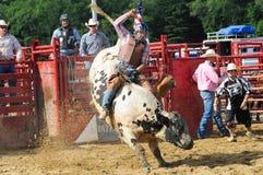 Marshfield,马萨诸塞- 2012年6月24日:乘坐A的圈地牛仔顽抗公牛 库存照片