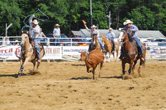 Marshfield,马萨诸塞- 2012年6月24日:设法两位圈地的牛仔系住A赛跑操舵 免版税库存照片