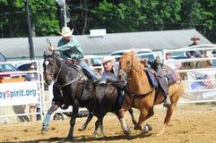 Marshfield, Μασαχουσέτη - 24 Ιουνίου 2012: Ένας κάουμποϋ ροντέο που βουτά από το άλογό του για να πιάσει έναν ταύρο στοκ φωτογραφία με δικαίωμα ελεύθερης χρήσης