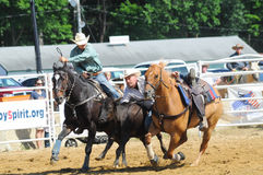Marshfield, Massachusetts - June 24, 2012: A Rodeo Cowboy Diving From His Horse To Catch A Steer. Steer wrestling was only one event at the New England Wild West Royalty Free Stock Photography