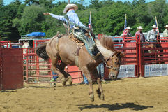 Marshfield, Massachusetts - June 24, 2012: A rodeo cowboy riding a bucking bronco Royalty Free Stock Photo