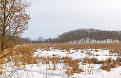 Marshland and Hills in Winter Colors Stock Images