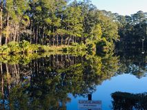 Marshland. Of Seabrook Island South Carolina royalty free stock photography