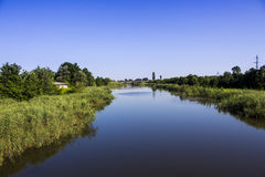 Marshland. Pond in marshland. Geogria, Poti stock photos