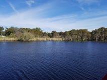 Marshland on St. John`s river, Florida. Blue sky royalty free stock images