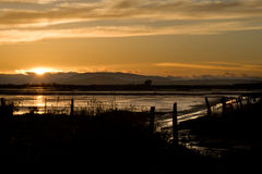 Marshland at sunset Royalty Free Stock Photo