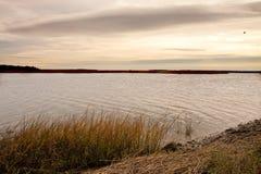 Marshland Under Cloudy Skies Stock Photography