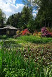 Marshlands and cottage Royalty Free Stock Photo