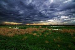 Marshlands Royalty Free Stock Image