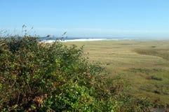 Marshlands of Coast Guard Beach, Cape Cod`s National Seashore