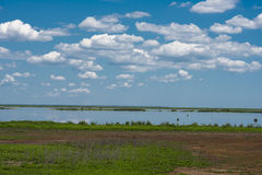 Marshlands in Southern New Jersey. Green marshlands under dramatic blue bky and white clouds Stock Photo