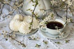Marshmallow και τσάι με τους ανθίζοντας κλάδους Στοκ φωτογραφία με δικαίωμα ελεύθερης χρήσης