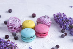 Marshmallow και macaroons Στοκ Φωτογραφίες